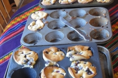 2014_LabRetreat_IMG_1790_blueberry_muffins