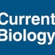 current biology logo